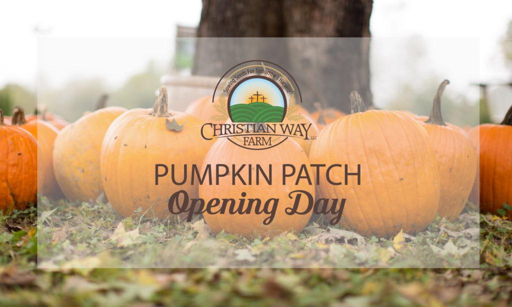Christian Way Farm Pumpkin Patch Opening